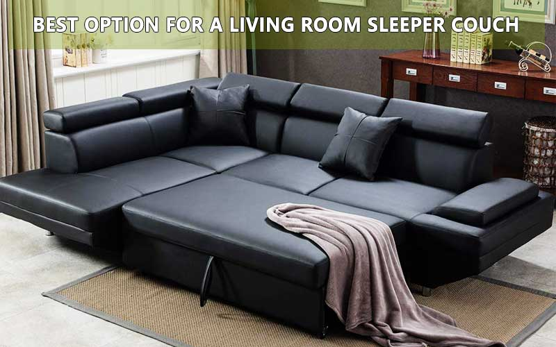 Best option for a Living Room sleeper review
