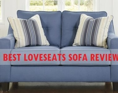 Best Loveseats Sofa Review